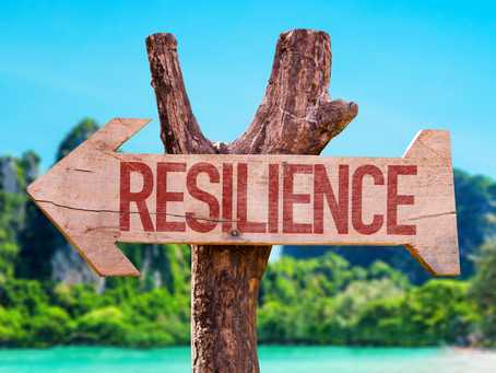 Resiliency: An Equal Opportunity Resource