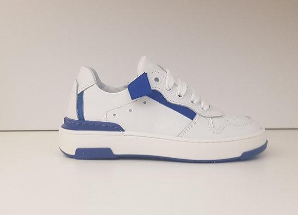 Morelli Sneaker 51302