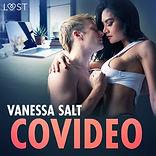 covideo-erotisk-novell.jpg