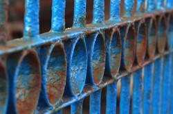 Blue rust