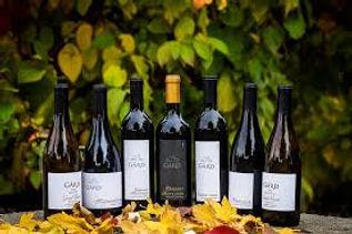 Gard Wines.jpeg
