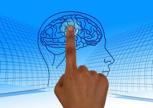 finger touching drawing of human brain