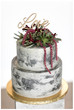 Concrete and Succulents [Styled Shoot]