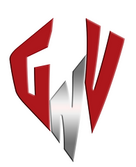 GVN3.png