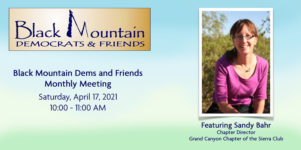 Black Mountain Dems and Friends Monthly Meeting April 2021