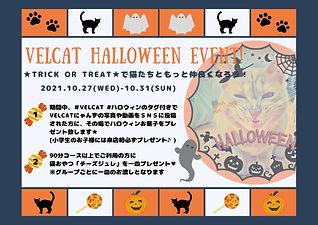 VELCAT Halloween event!.jpg