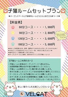 第2回子猫ルーム料金表&注意事項.jpg