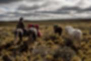 Tierra del fuego Horseback ride 1.png