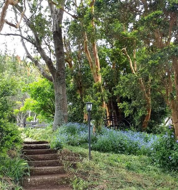 Entrada jardin.jpg
