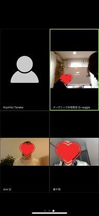 Zoomiphone06.jpg