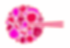 Organic.red pink.png