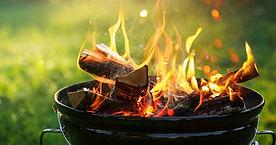 オーガニック望診断講座 火のエネルギー
