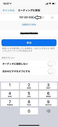 Zoomiphone03.jpg
