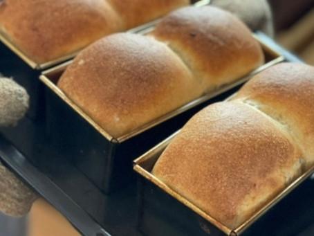 自家製天然酵母パンとは?その魅力・メリットをご紹介