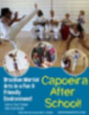 Capoeira Gainesville Martial Arts.jpg