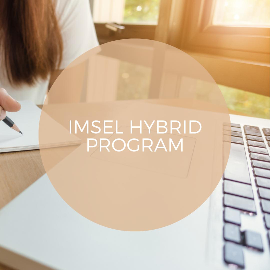 IMSEL Hybrid Program