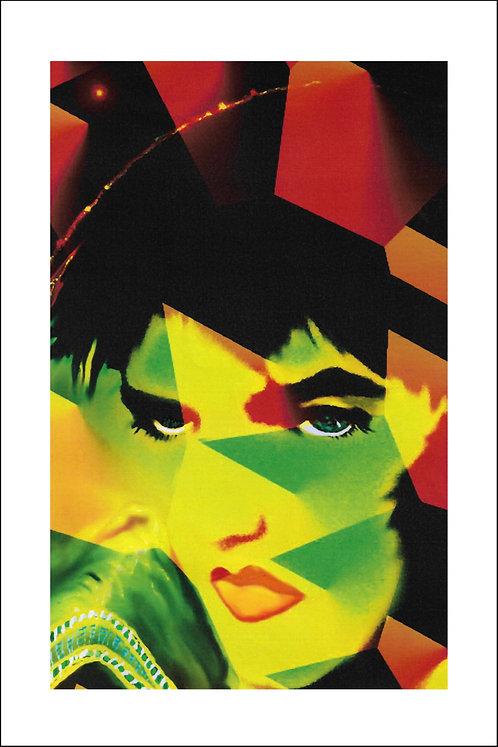 Elvis 7 - 20 x 30 Fotoblad