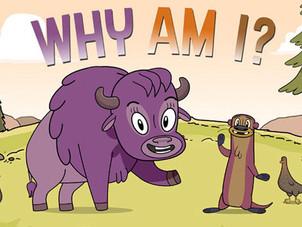 Regina Animator asks Why Am I?