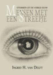 van Delft coverafbeelding.jpg