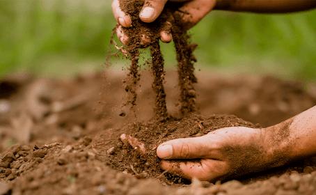 Qualidade do solo: Indicadores e importância