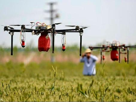 Automação: grande aliada do agronegócio