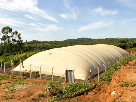 Produtores investem em Biodigestores para reduzir gastos com energia.