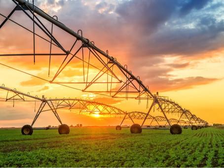 A Importância da Escolha do Equipamento Ideal de Irrigação na Produção