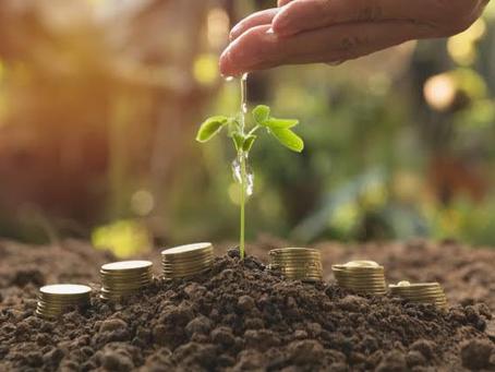 Planejamento Financeiro: O Caminho Certo Para o Seu Negócio