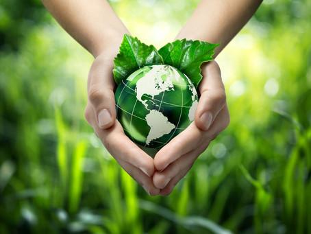 Agronegócio sustentável: uma breve realidade do Brasil