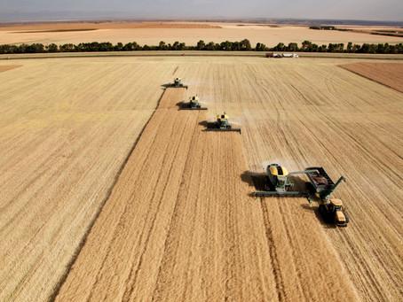 Silício, Uma Vantagem Para a Produção em Áreas de Cerrado