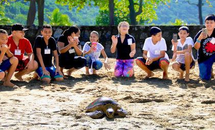 a623591ea7293 Guarujá promove interação dos alunos durante soltura de tartarugas. May 13