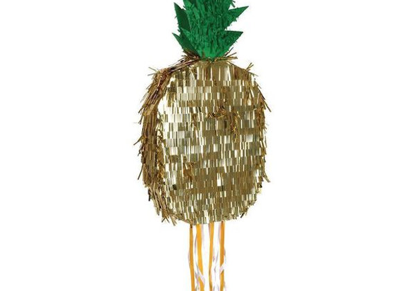 Pineapple Pinata!