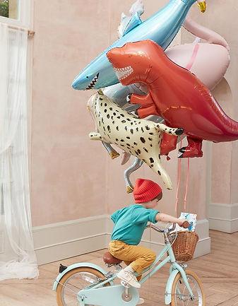 Balloons_832x1070px_660x.jpg
