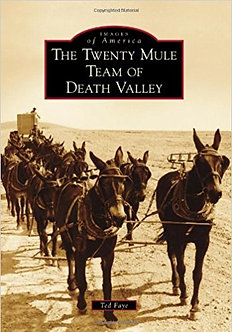 The Twenty Mule Team of Death Valley, by Ted Fayego