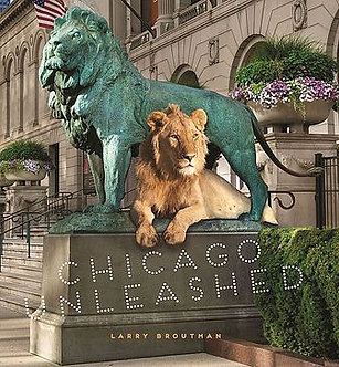 Chicago Unleashed, by Larry Broutman