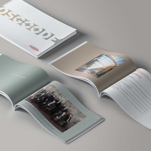 Building Osgoode Campaign Final Report