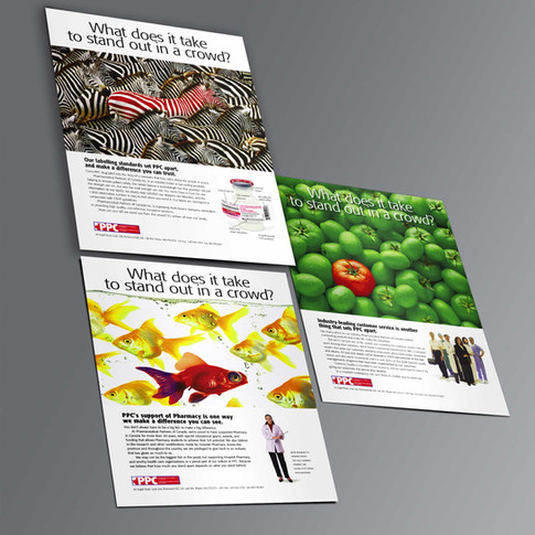 PPC Corporate Advertising Campaign