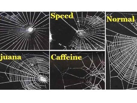 Mokslas prie kavos puodelio