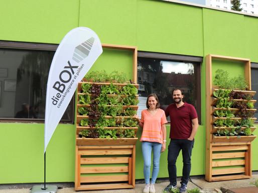 dieBOX und Herbios - Flexibel, grün und innovativ