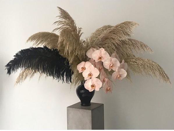 Floral Trends: Hued Orchids