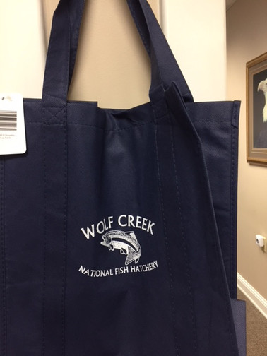 Re-usable Shopping Tote