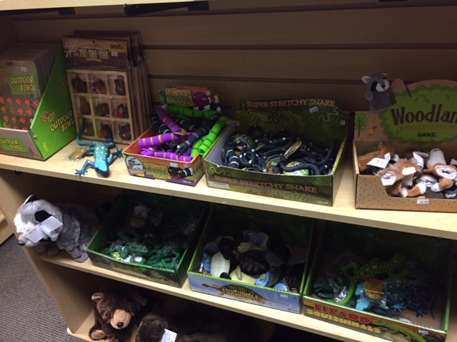 Frogs, Lizards, and Snakes Oh MY!