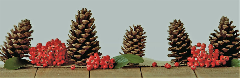 brown-pine-cone-decors-639123 (2).jpg