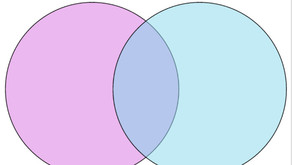 Confessions of a Professional Venn Diagram