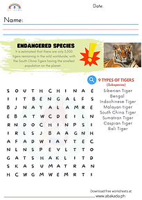 Word Search - 9 Types of Tigers