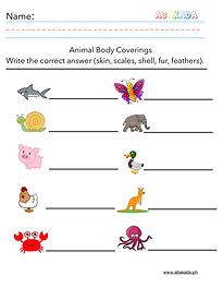 Body Coverings