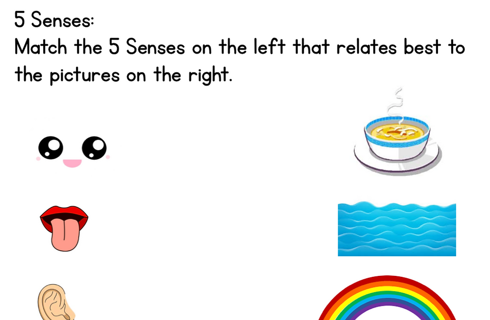 Five Senses Worksheet for Kindergarted and Grade 1 Students