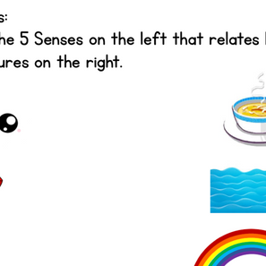 Five Senses and Math Worksheets