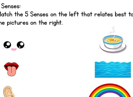 Five Senses and Math Worksheets