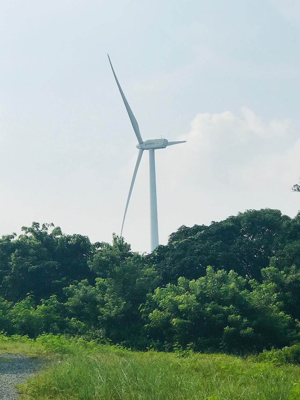 Windmill Farm, Pililla Rizal